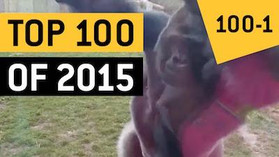 Top 100 des vidéos qui ont fait le buzz en 2015
