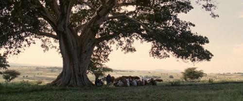 Difret, un film de Zeresenay Mehari