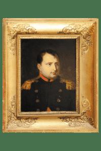 Napoleon Empire Antics