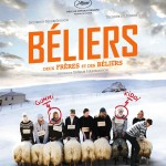 Béliers, un film de Grimur Hakonarson