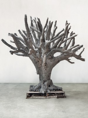 iron-tree-ai-wei-wei